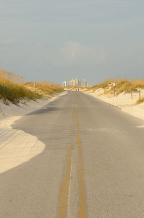 sea oats: Sea Oats and drifting sand on a long straight portion Johnson Beach Road near Pensacola