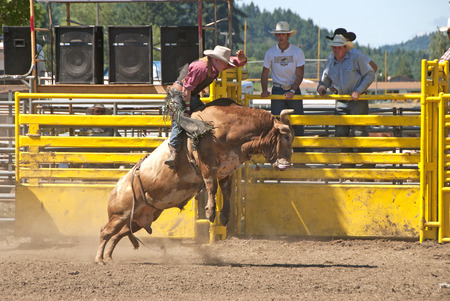 arena rodeo: Bull Ride event at the Yoncalla Rodeo on the 4th of July, NWPRA stop in this small southern Oregon town