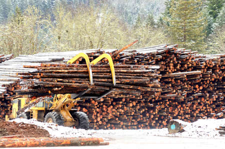 forest products: A large log loader moving logs from the yard to the mill in Southern Oregon