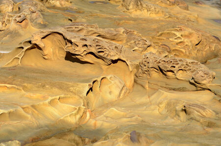 acres: The Pacific ocean has worked wonders creating sculptures in the sandstone shore line near Shore Acres State Park in Oregon Stock Photo