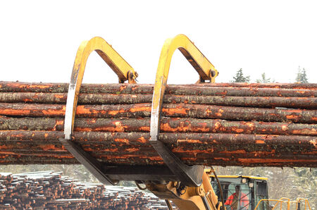 log deck: A large log loader moving logs from the yard to the mill in Southern Oregon