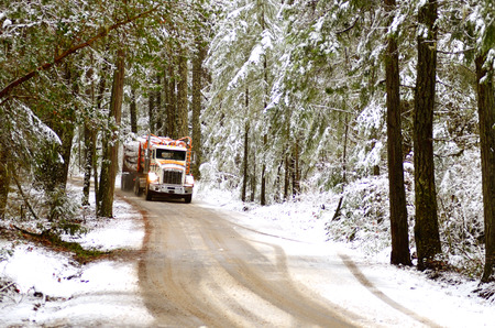 lumber mill: A log truck emerges from the snowy southern Oregon forest with a load of logs destined for the lumber mill