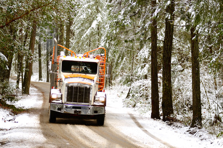 destined: A log truck emerges from the snowy southern Oregon forest with a load of logs destined for the lumber mill