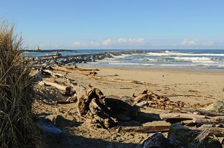 coquille: Oceano pacifico sabbia e legni a Bullards Beach State Park nei pressi della foce del fiume Coquille, in Bandon Oregon Archivio Fotografico