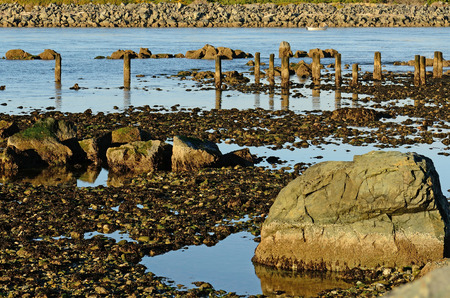 coquille: Old pier pillars and rocks at the mouth of the Coquille River, in Bandon Oregon