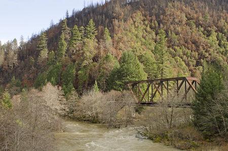 forest railroad: A railroad steel truss bridge crosses a small river following a forest fire