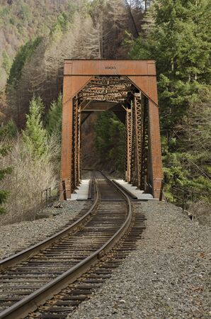 forest railroad: A railroad steel truss bridge crosses a small river following a forest fire