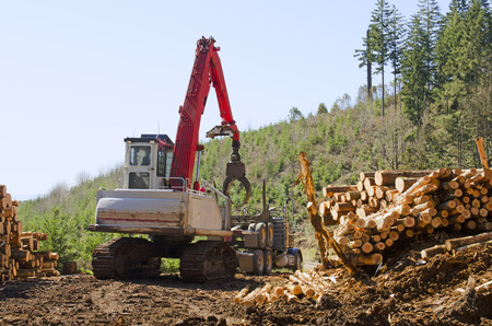 pile engine: Track loader unloading the rear trailer from a log truck prior to loading at a logging site in Oregon
