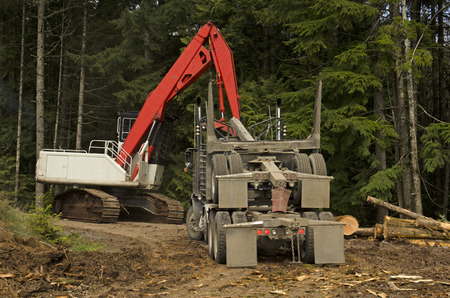 A log loader or forestry machine loads the rear trailer on a log truck at the site landing in southern Oregon photo