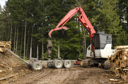 A log loader or forestry machine loads the rear trailer on a log truck at the site landing in southern Oregon Stock fotó