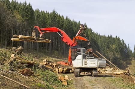 Un cargador de registro o de la máquina forestal mueve troncos cortados frescos para la carga en un camión de registro en el registro de sitios de aterrizaje en el sur de Oregon Foto de archivo