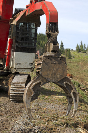 mule train: A log loader or forestry machine moves fresh cut logs for loading on a log truck at the site logging landing in southern Oregon