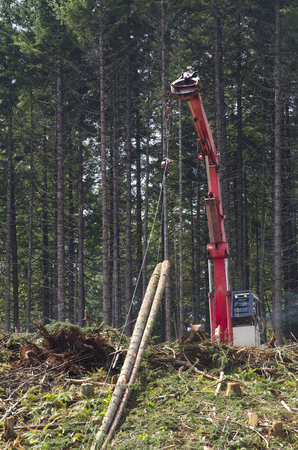 A logging yoder or loader yarder is being used to harvest cut to length logs up the hill to the unit landing Stock fotó