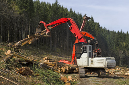 A log loader or forestry machine moves fresh cut logs for loading on a log truck at the site logging landing in southern Oregon