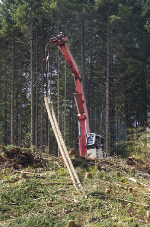 A logging yoder or loader yarder is being used to harvest cut to length logs up the hill to the unit landing photo