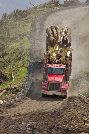 pile engine: a log truck leaves the site landing with a load of conifer logs destined for the mill in southern Oregon