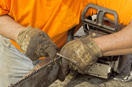 sharpen: Logger sharpening his chain saw prior to falling trees on a construction site