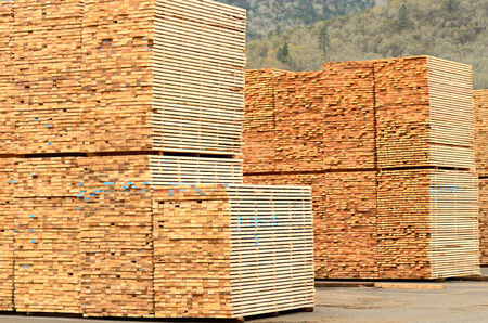 Stack of green fir 2 x 4 lumber studs at a small log processing mill in southern Oregon, ready for the drying kiln Stock Photo