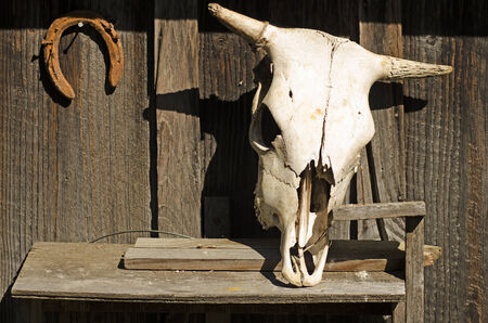 bad luck: The skull of a dead cow and an upside down horseshoe signfy bad luck and death on this old barn