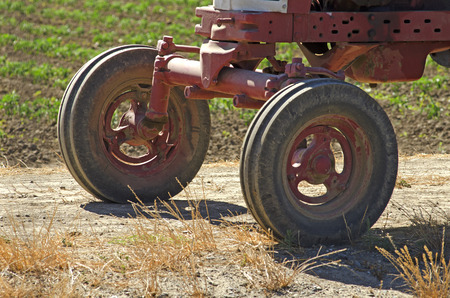 Special row crop tractor weeds and harrows a field of row vegetable crop in Northern California Stok Fotoğraf - 33248651