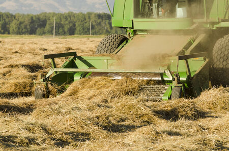 combine harvester: Combine working a newly cut field of summer wheat in the Willamette Valley of Oregon
