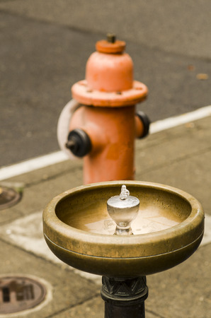 This drinking fountain is unique to Portland Oregon and is called a Bensen Bubbler and delivers continuous drinking water to the downtown area