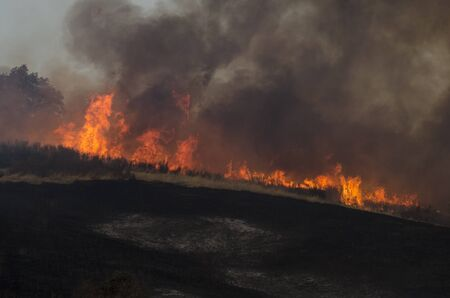 suppress: Roseburg, OR, USA - September 04, 2014: Fire fighers work with aviation helicopters to suppress a natural cover brush and grass fire in southern Oregon