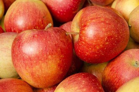 sonata: Bins of red sonata apples at a farm orchard farmers market in Hood River Oregon Stock Photo