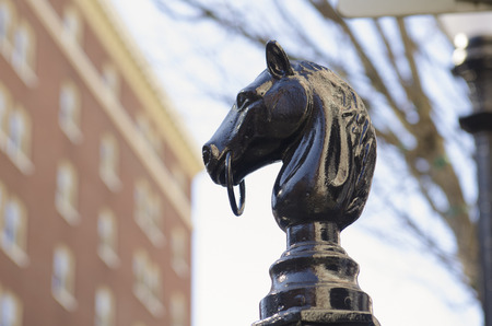 south park: Horse head horse ring sits on a pole in the South Park Blocks in Portland Oregon