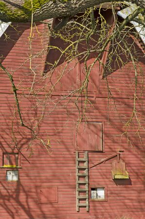 A old red barn sits on a farm in the Willamette valley in Oregon