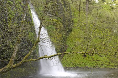 Wahkeena Fälle in der Columbia River Gorge National Scenic Area Standard-Bild - 44982612