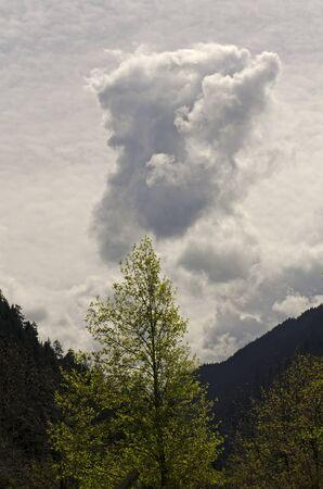 Devilish or zues face in the development of a thunderstorm rain cloud in Oregon Standard-Bild
