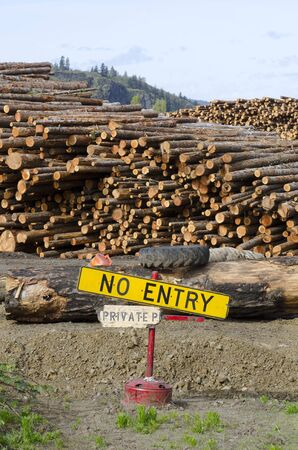 lumber mill: stack of conifer fir logs and no entry sign at a lumber mill in the Columbia River Gorge