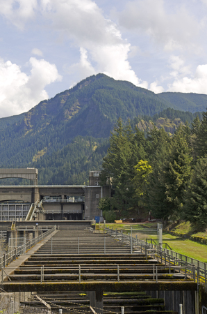 Bonneville dam fish ladder on the Columbia River
