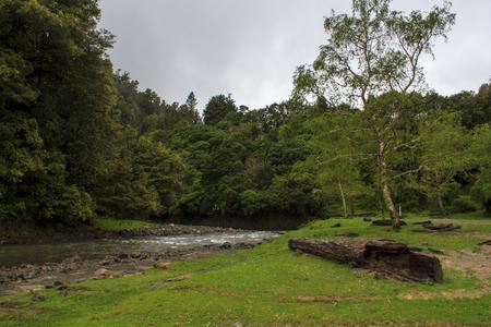 Scenic landscape in North Island, New Zealand Banco de Imagens - 96708777