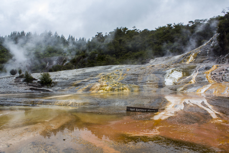 Cascade Terrace and hot springs Algae at Orakei Korako, The Hidden Valley, New Zealand