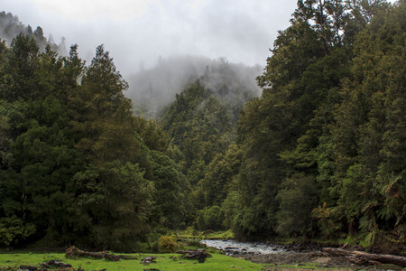 Stunning landscape in North island of New Zealand Banco de Imagens