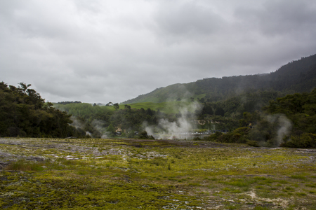 Geothermal landscape with hot springs and steam from geysers, New Zealand
