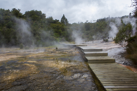 Silica Terraces, Orakei Korako Geyserland, Geothermal Park, New Zealand