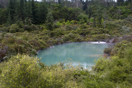 Geothermal Blue Lake With Steam, Whakarewarewa village, New Zealand