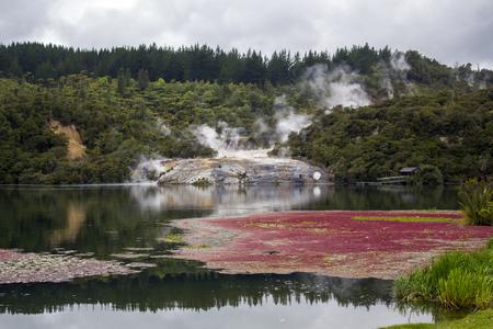 Rainforest, beautiful river and geothermal activity in Orakei Korako park, The Hidden Valley in New Zealand