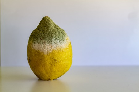 Spoiled lemon with mold