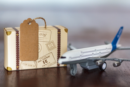Luggage and Airplane. Travel concept