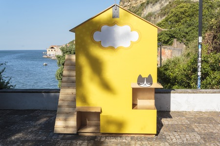 Shelter for colonies of stray cats