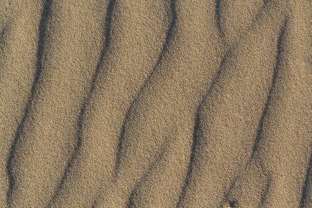 Beach Sand texture for background. Top view