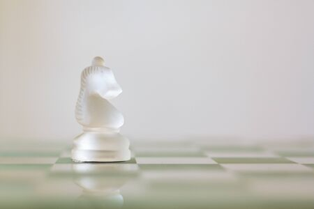Chess Knight Horse on chessboard
