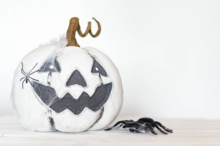 White halloween pumpkin with cobweb and spiders on white background with copy space Stok Fotoğraf