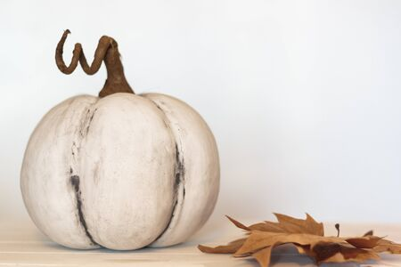 White pumpkin and dry Autumn leaves. With copy space Stok Fotoğraf