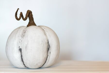 White pumpkin on white background with copy space