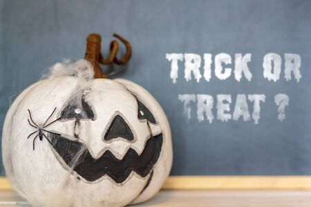 White halloween pumpkin with spider web and spider. With Trick or treat text